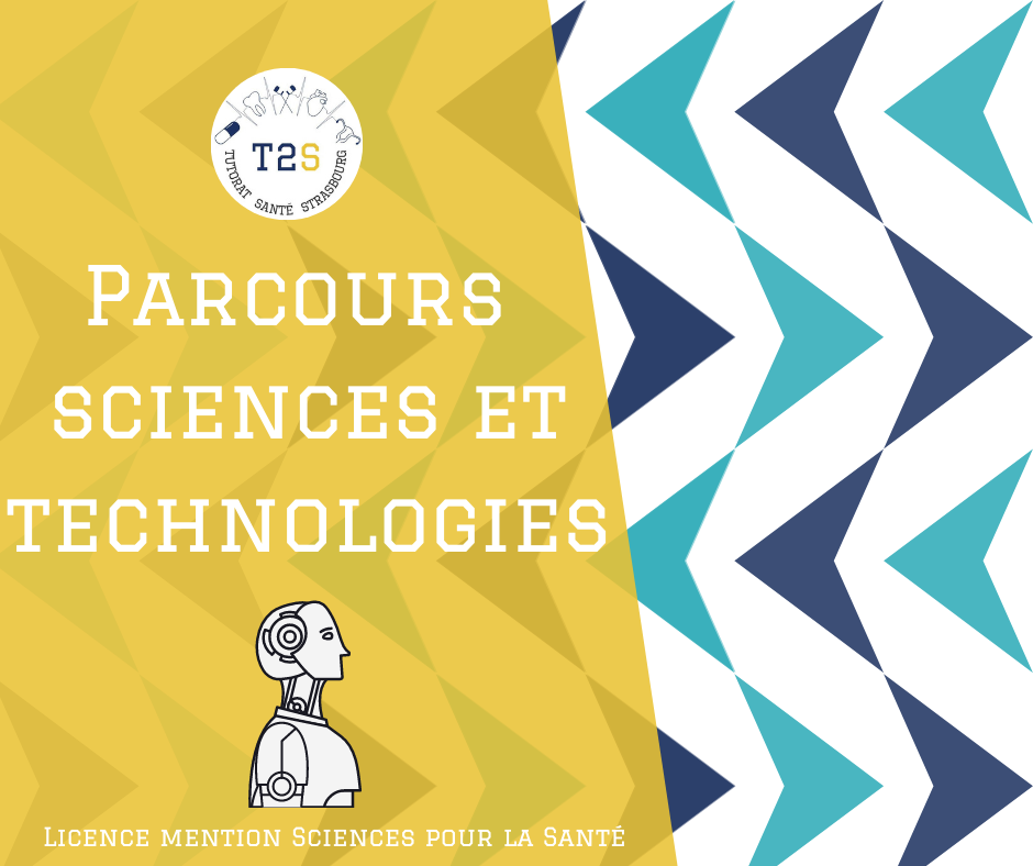 parcours sciences technologies
